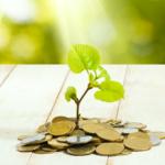 コインから成長する植物