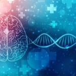 脳とDNA